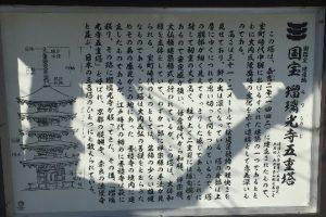 ruriko-ji11